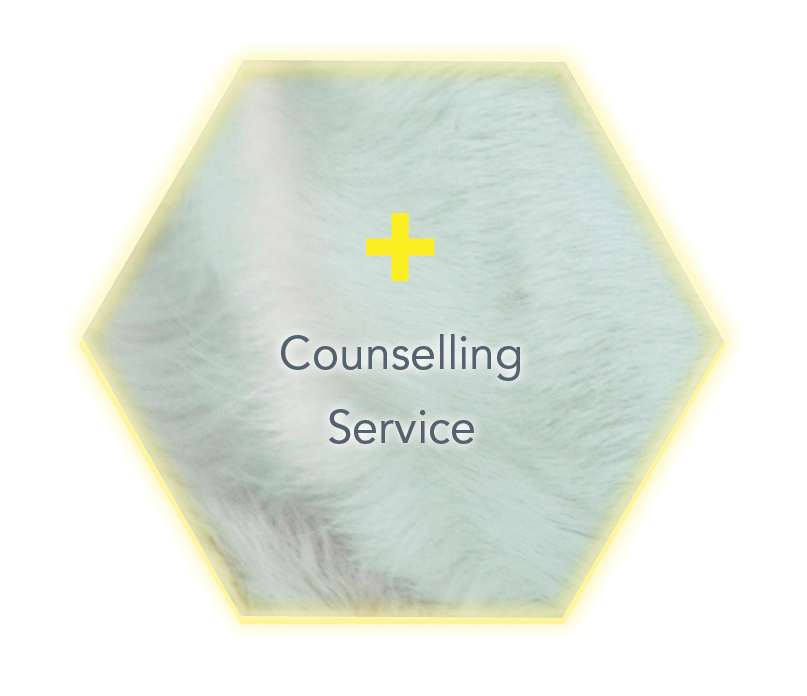 BVSCCounsellingIcon